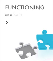 Functioning as a Team